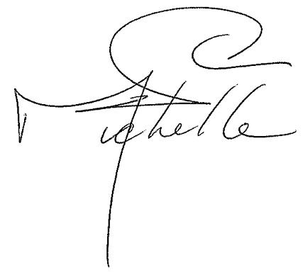 Michelle-signature.png