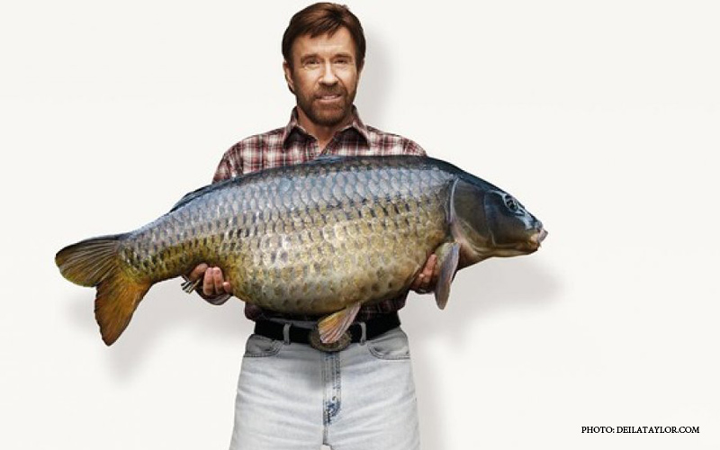 Chuck_Norris_Eat_Fish.jpg