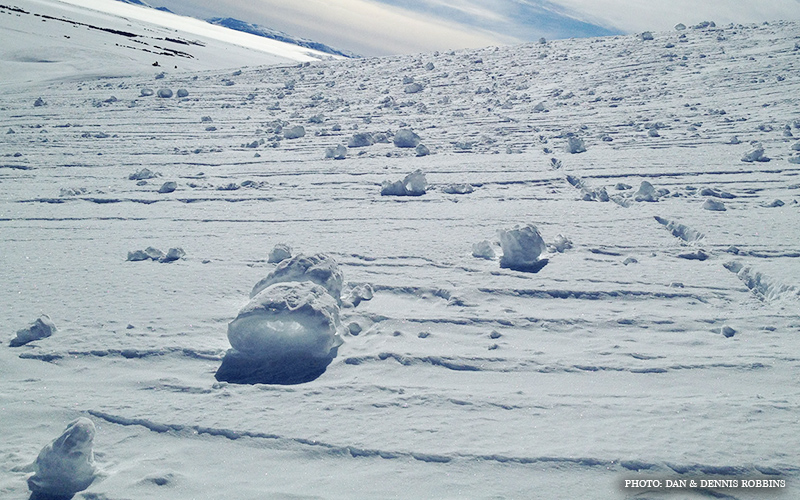 Snow_Rollers_1.jpg
