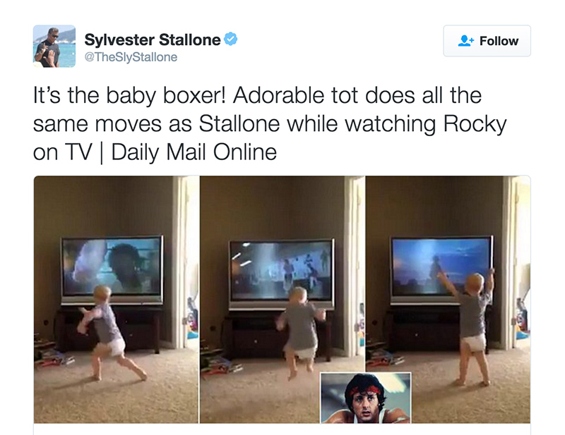 Rocky_Baby_Stallone.jpg