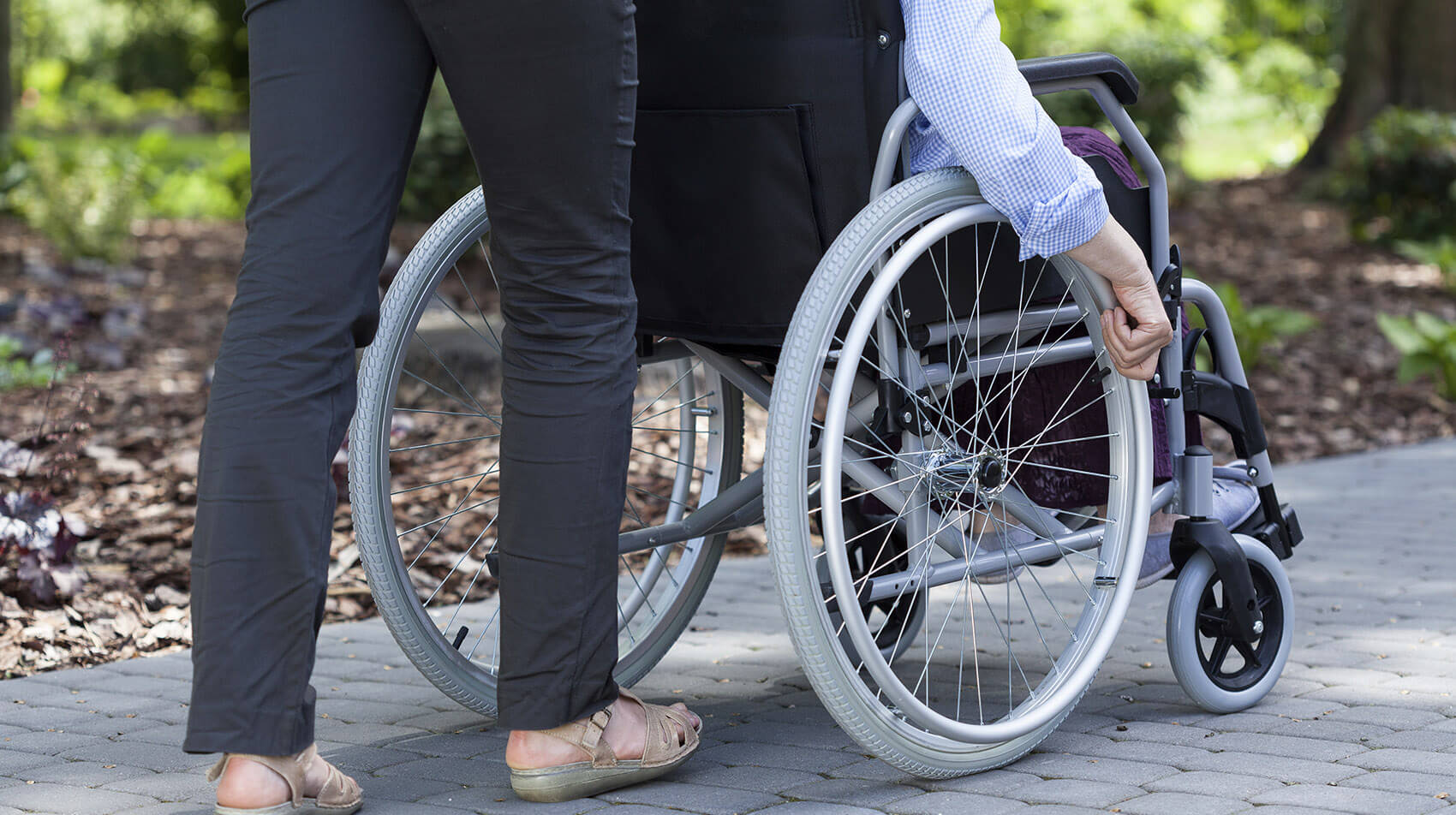 Disability support policy