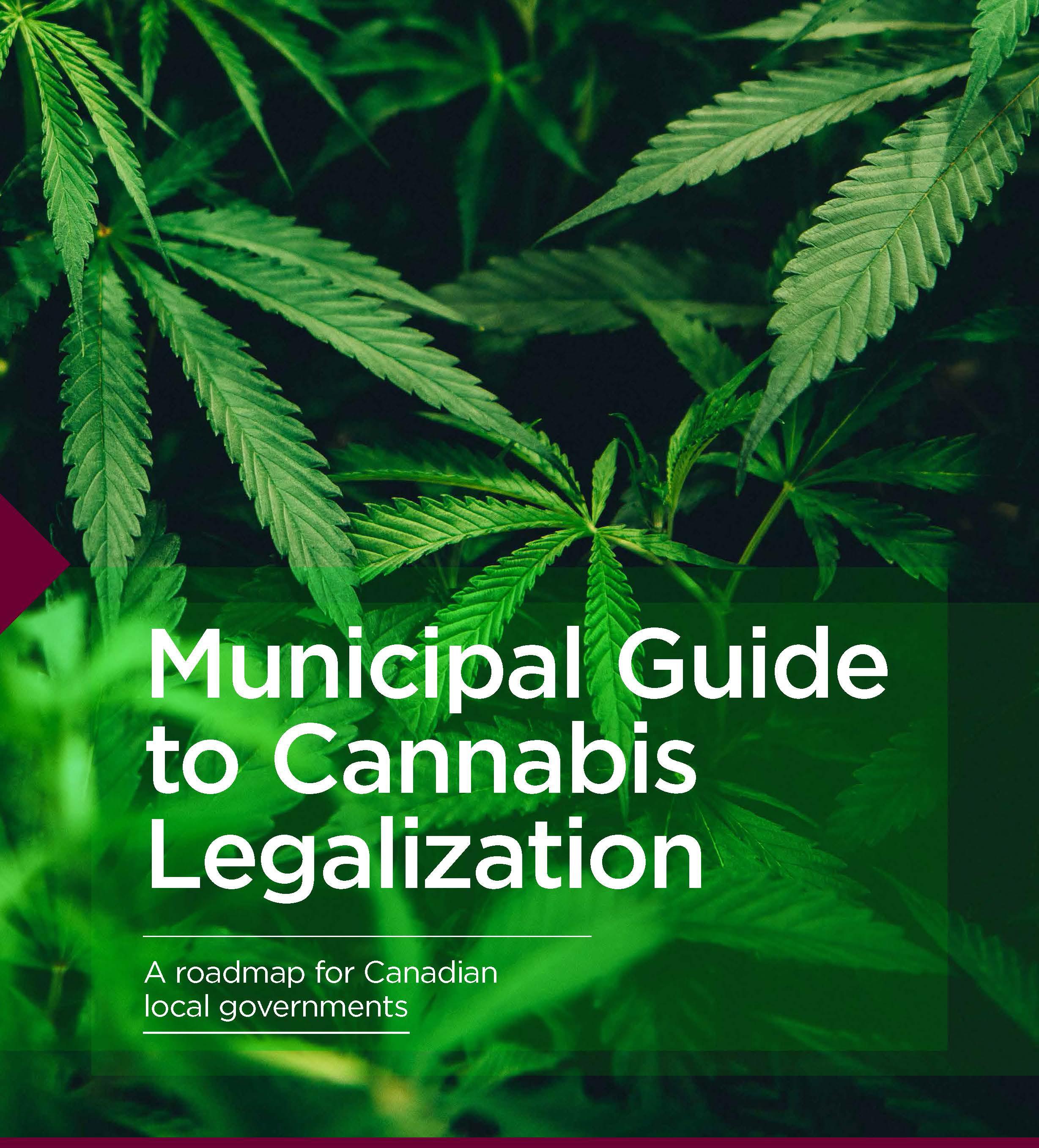 Cannabis-Guide-EN.jpg