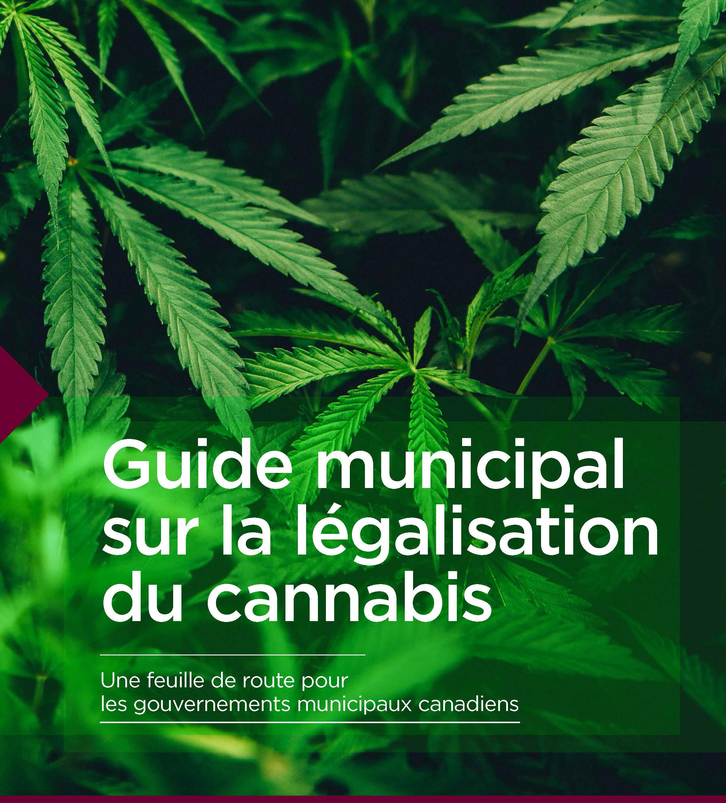 Cannabis-Guide-FR.jpg