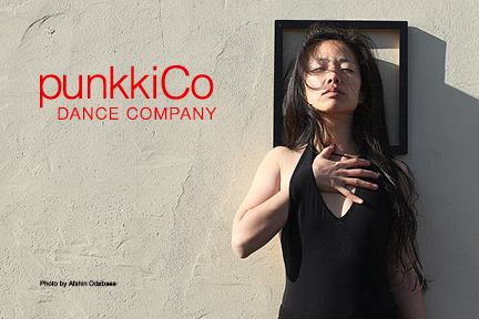 punkkiCo2.jpg
