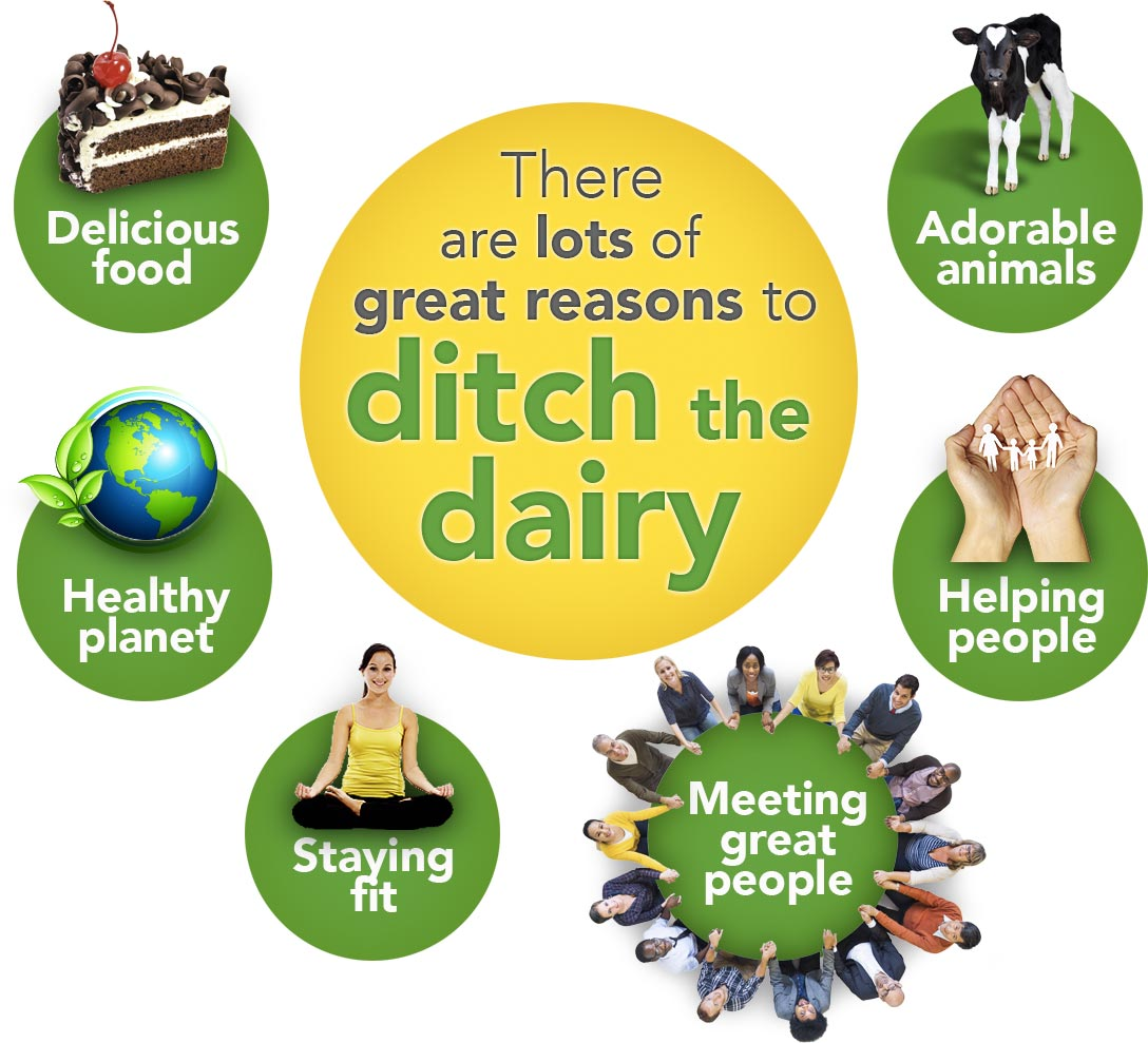 Ditch the Dairy Infographic