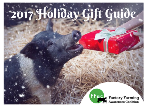 2017_Holiday_Gift_Guide.png