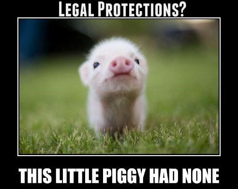 piggylegal.png