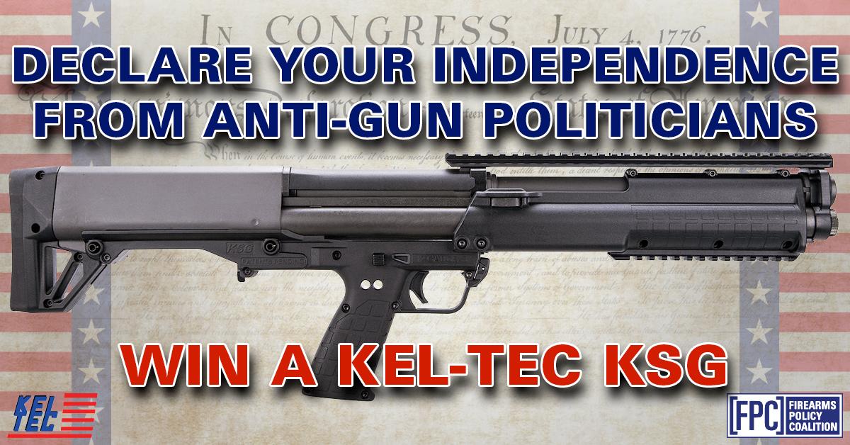 Kel-Tec-C.jpg