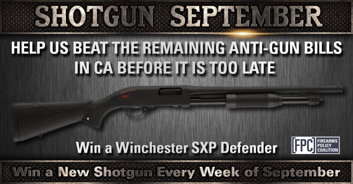 Shotgun-wk2b_(1).jpg