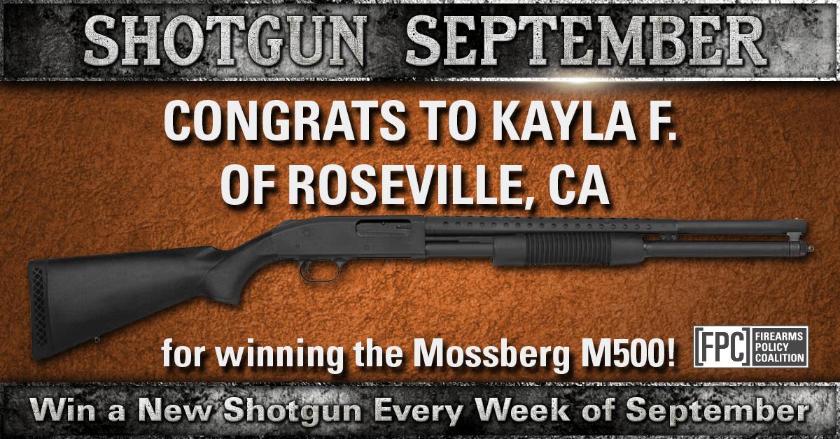 Shotgun-wk3-win.jpg