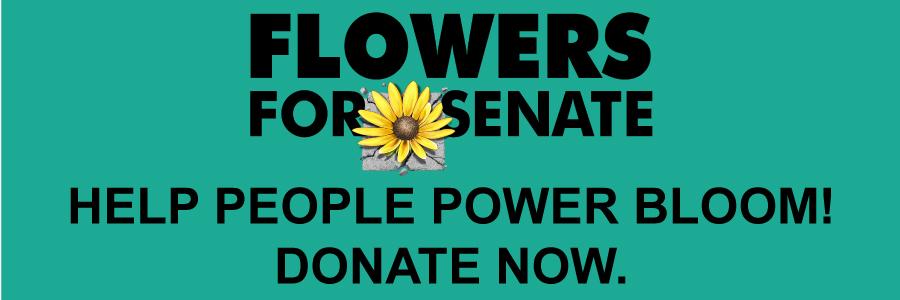 FFS_donate_now.jpg