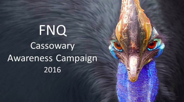 cassowary_awareness.png