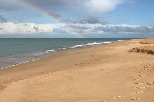Beautiful Golden Beach
