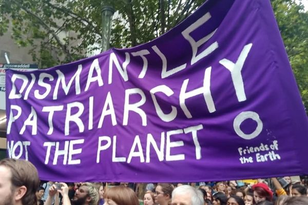 Banner: Dismantle patriarchy, not the planet