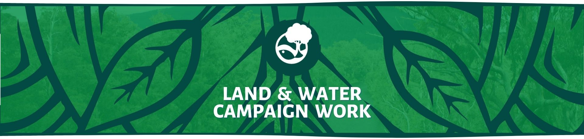 Land & Water Campaign Work