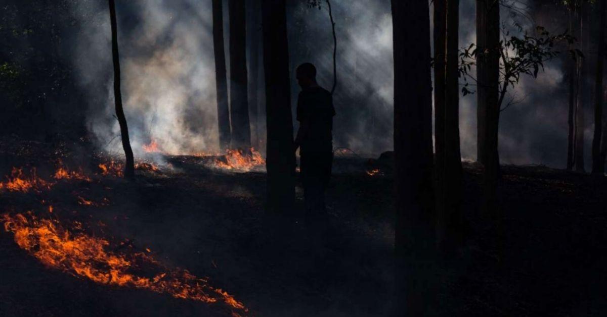 Copyright Firesticks. Firesticks Practitioner and Gumea-Dharrawal man Jacob Morris tending the Cultural Burn at the Bundanon National Indigenous Fire workshop 2018.