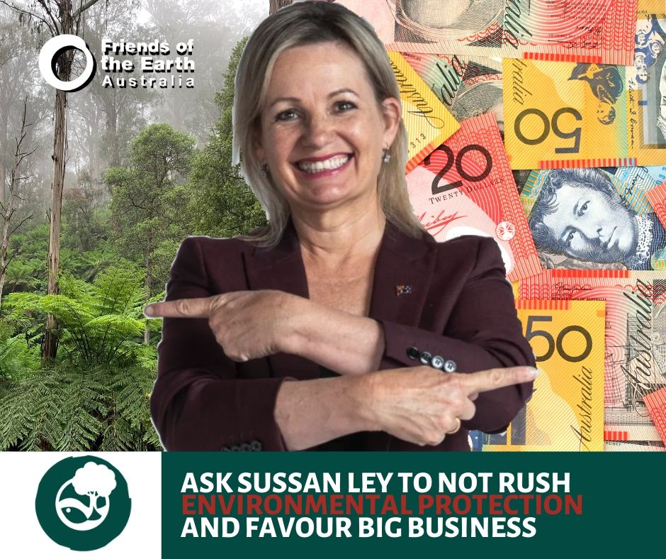 Will Sussan Ley favour environment and democracy or big business and money?