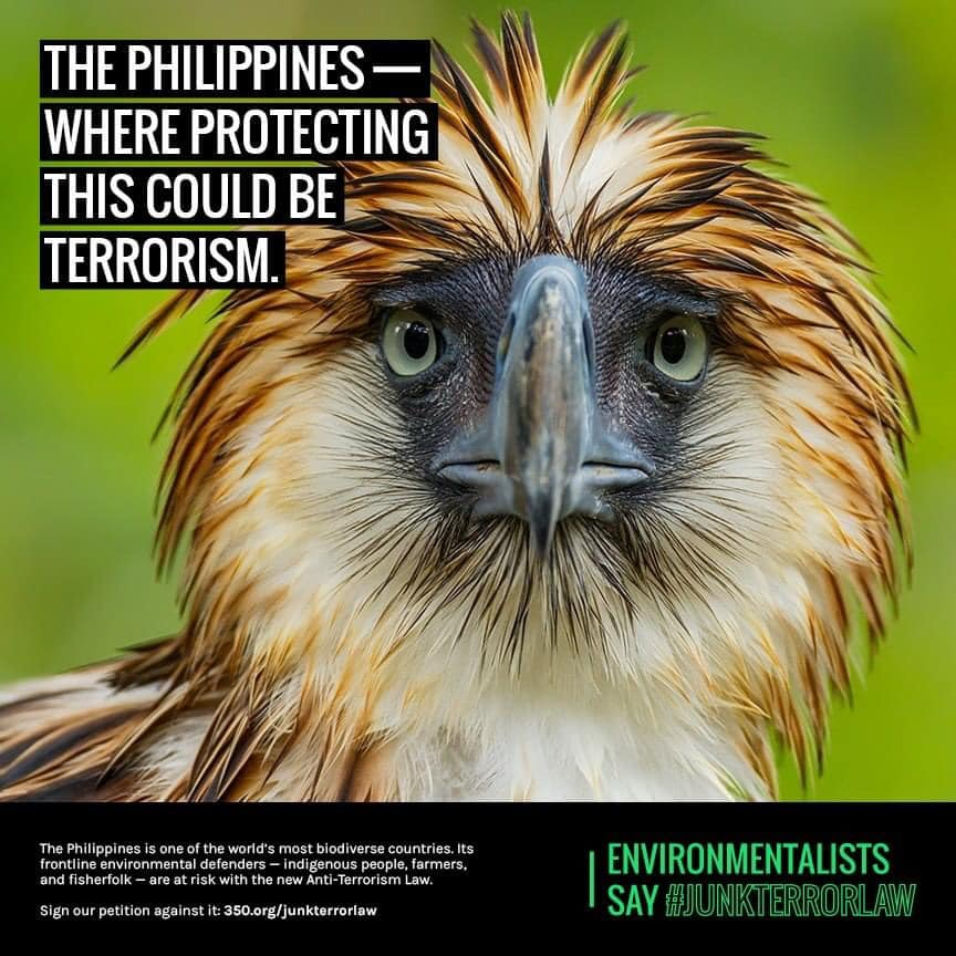 The Philippines where protecting nature could be terrorism