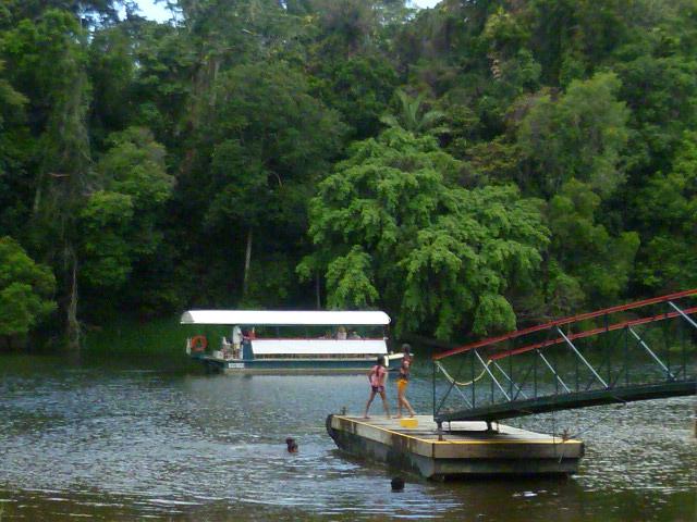 River_Cruise_Kuranda_28.JPG