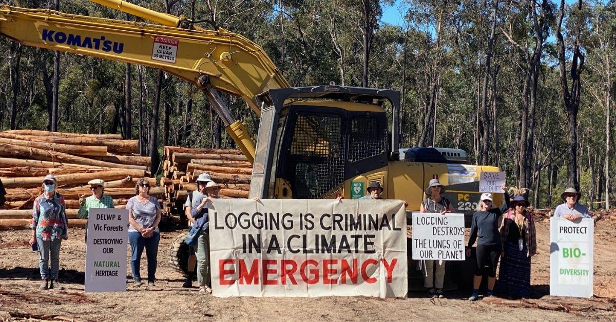 Logging protest