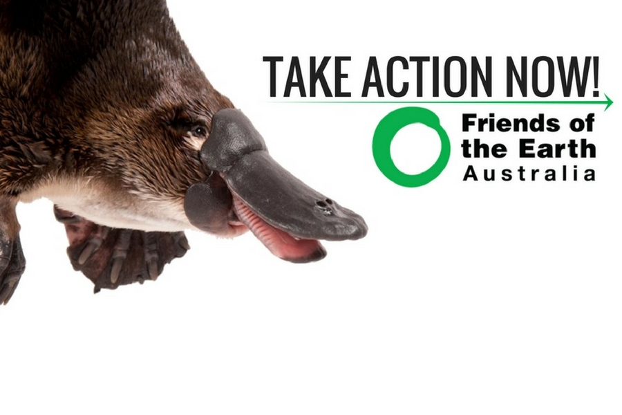 Platypus_Pesticide_ANZECC_Regulation.jpg