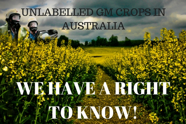 UNLABELLED_GM_CROPS_TRYING_TO_BE_SNUCK_INTO_AUSTRALIA.jpg