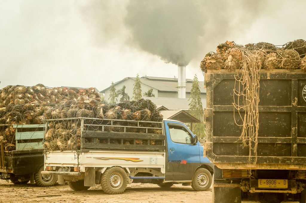 palm_oil_trucks_Dec_2015_pic2.jpg