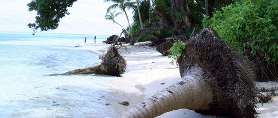 GLOBAL_CLIMATE_DEAL.jpg