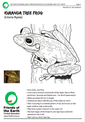 Kuranda_Tree_Frog_colouring_thumbnail.png