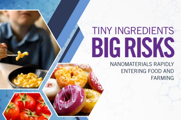 New_study_raises_further_questions_about_the_safety_of_nano-ingredients_in_food.jpg