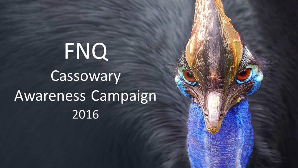 FNQ_Cass_Awareness_Camp.jpg