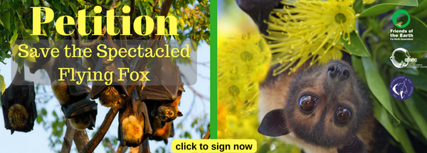 Petition_to_Save_the_Spectacled_Flying_Foxes_socia.png