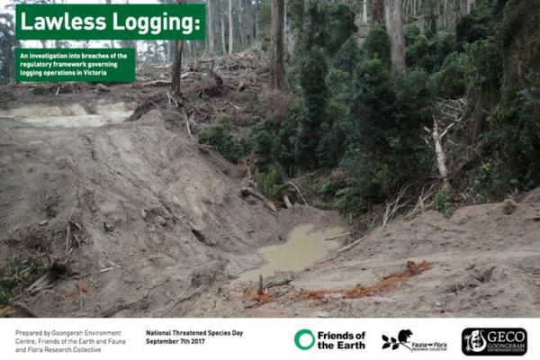 Lawless_Logging_Report.jpg