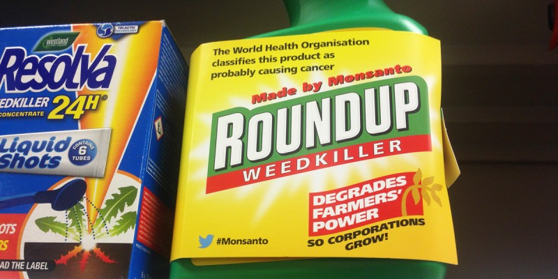 roundup_re-labeled_1200x600.jpg
