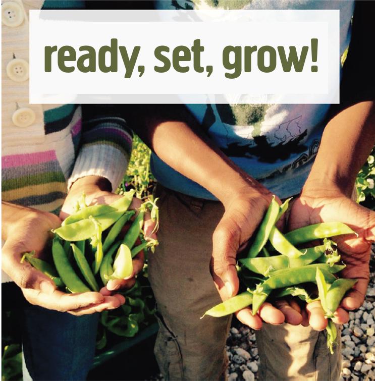 ready__set__grow.png