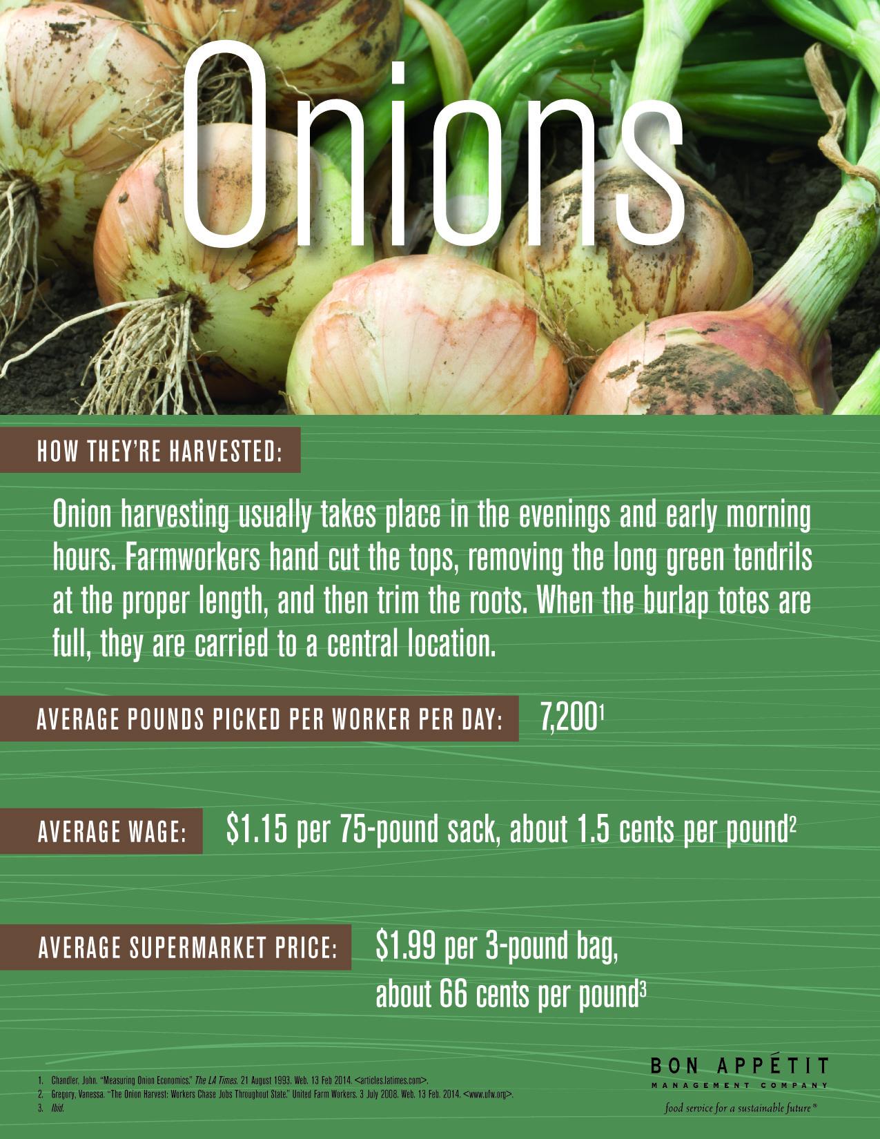 14-4621TableMini-Onions3.jpg