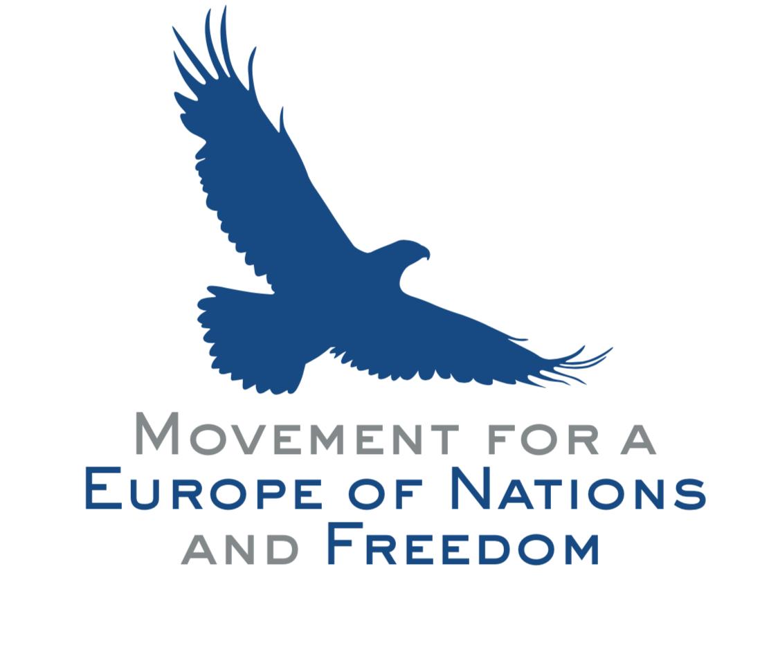 MENF Logo