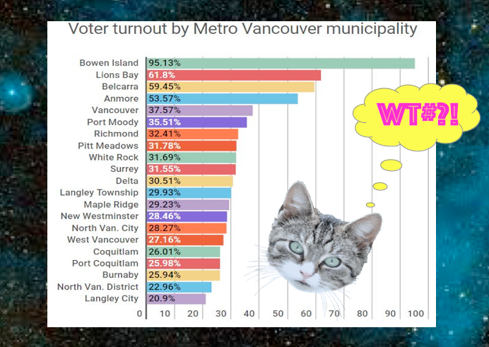 Orbit_voter_turnout.png