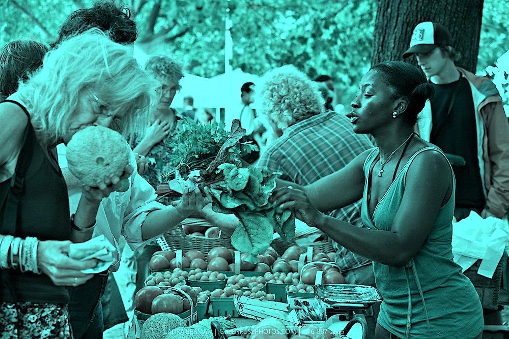 Farmers-Market-LB0708-4158-1-1.jpg