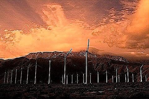 renewables3.jpg