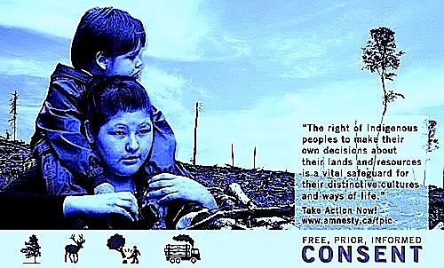 consent2.jpg