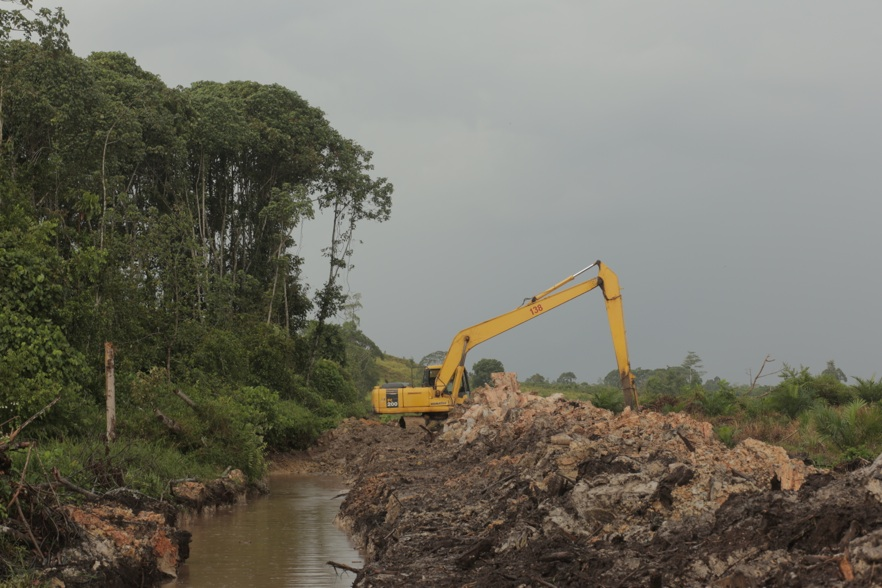 Digging_of_drainage_canal_next_to_Natural_forest_in_LSM_plantation.jpg
