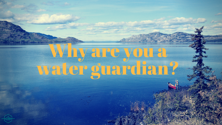 Why_are_you_a_water_guardian_.png