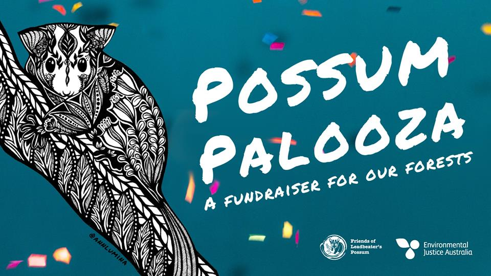 possum_palooza.jpg