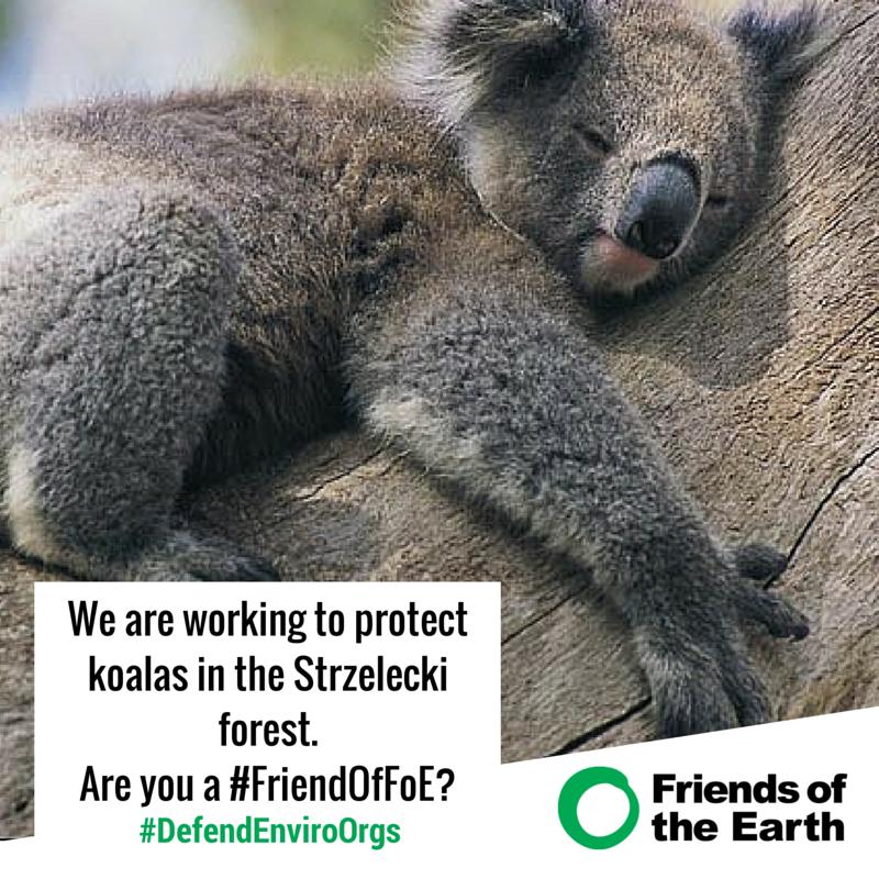 Koala._Are_you_a_Friend_of_FoE-.png