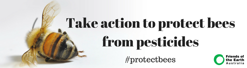 Take_action_to_protect_bees_from_pesticides_(1).png