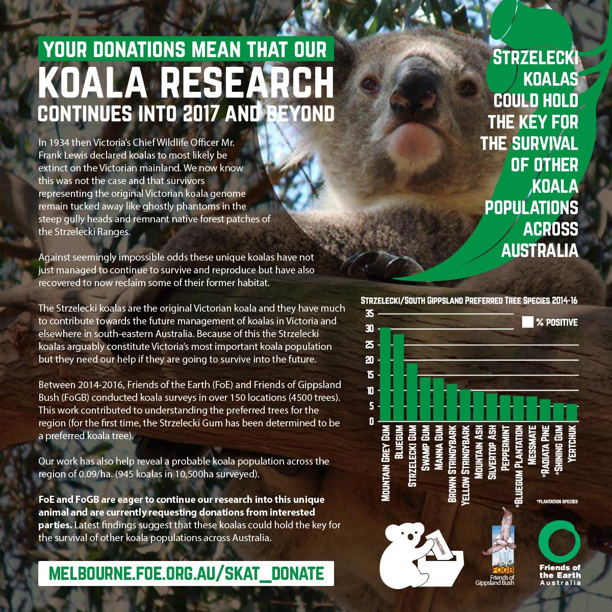 koala-donations-posterWEB.jpg