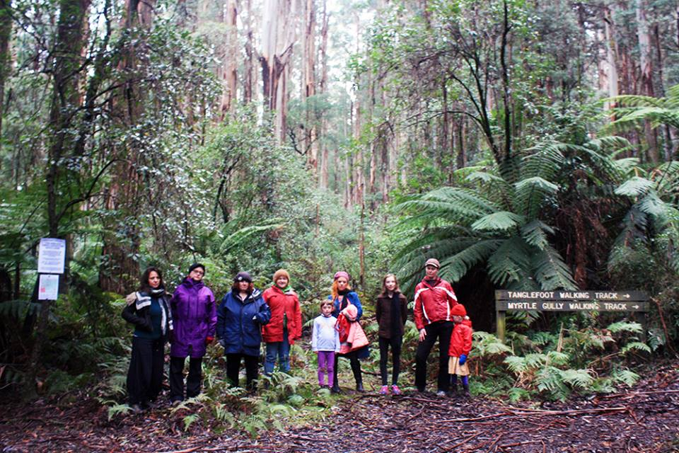 Toolangi_walking_tk_June_2017.jpg