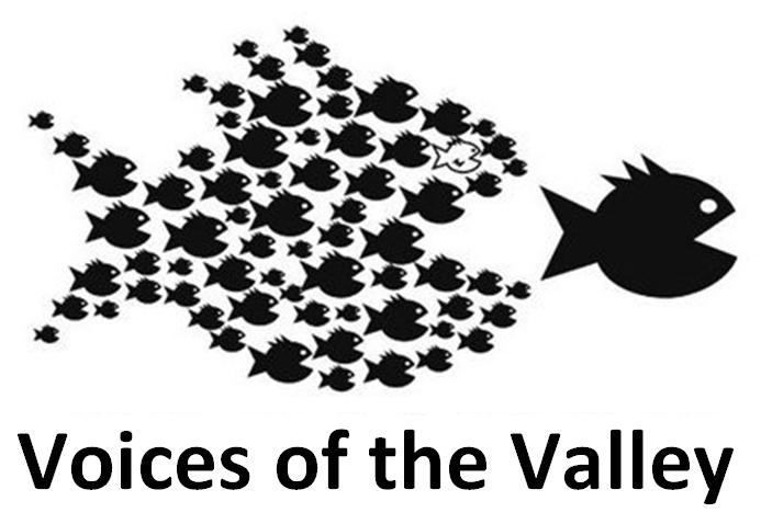 VoV_logo.png