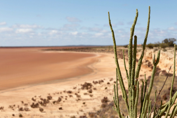 Lake Miranda - Salt Lake in Western Australia